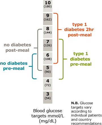 Diagram illustrating blood glucose targets for type 1 diabetes vs no diabetes pre- and post-meal