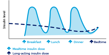 Graph showing basal and mealtime insulin doses