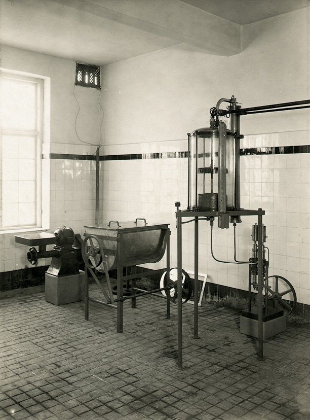 Novo Nordisk, history, production of insulin
